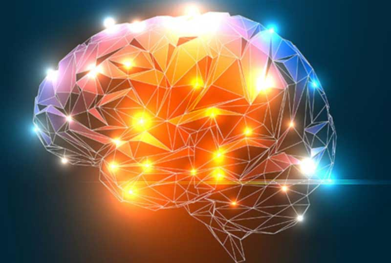 Learning a second language boosts brain-power scientists ...